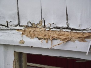 wet rot. dry rot problems